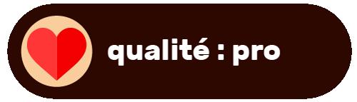icone qualité pro