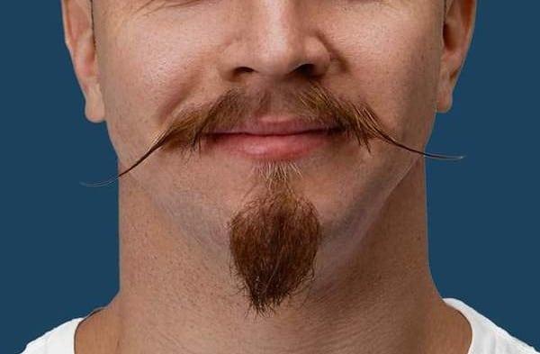 barbe van dyke avec moustache en pointe